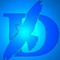 Логотип компании ООО «ДИСИТ»